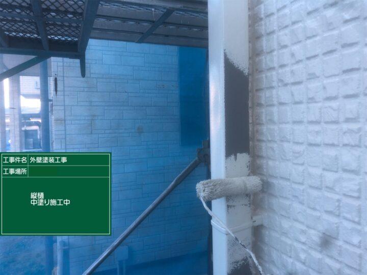 竪樋塗装(中塗り)