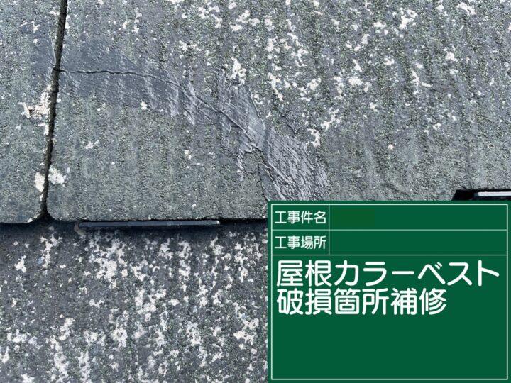 屋根破損箇所補修