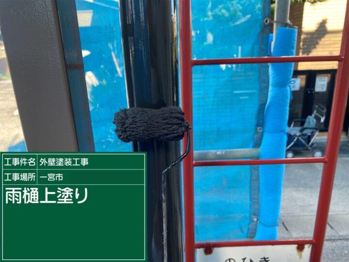 雨樋塗装(上塗り)